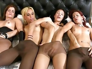 FULL video of four shemales in pantyhose fucking big asses